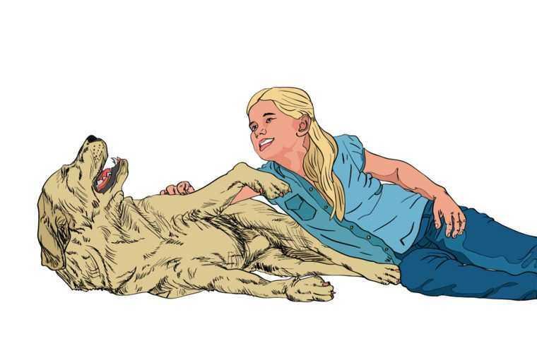 5 sinais de que seu cão realmente te ama