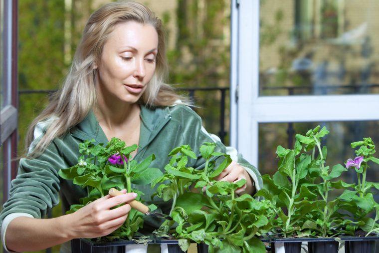 Se você conversa com o seu cão ou suas plantas, isto é o que a ciência diz sobre você