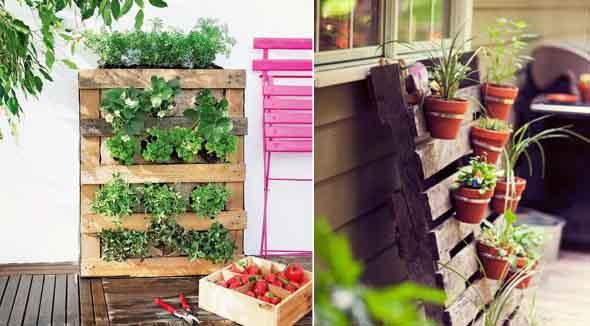Como montar um jardim vertical no quintal
