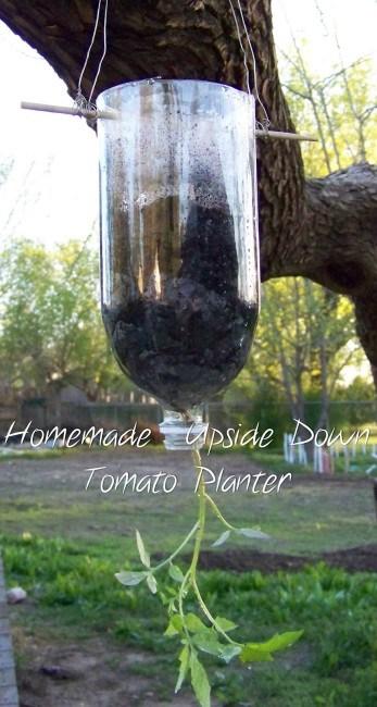 blog photos march 2012 313