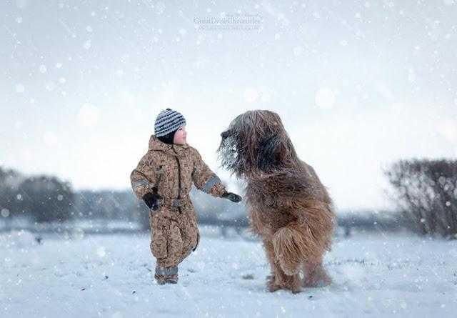20 imagens incríveis de crianças e seus cães de estimação