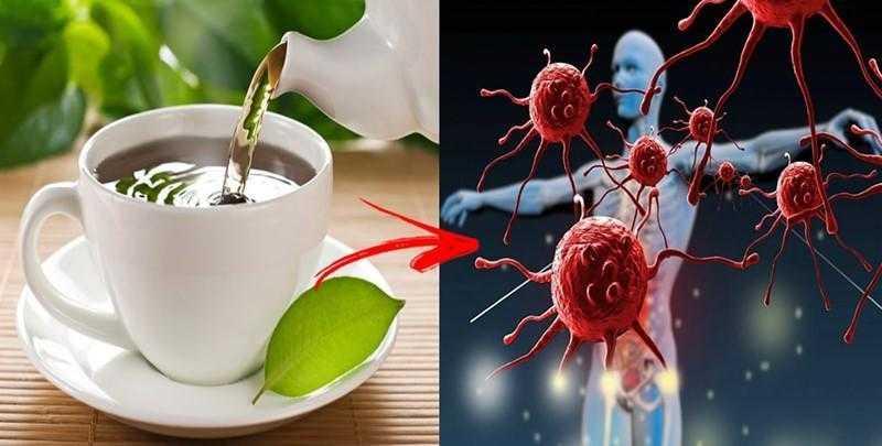Chás para Aumentar a Imunidade dd