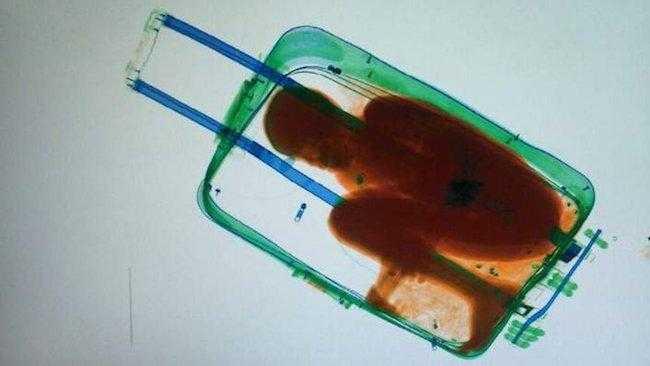 10 Coisas estranhas e bizarras encontradas em aeroportos