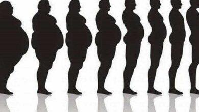 Foto de Sumo de beringela e gengibre, elimina até 3 kg em 1 mês