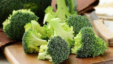 Os 10 Benefícios do Brócolis Para a Saúde