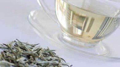 Os 8 Benefícios do Chá Branco Para Saúde