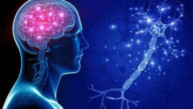 8 hábitos que afetam sua saúde cerebral sem que você perceba
