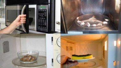 Foto de 9 Coisas INCRÍVEIS que se pode fazer com o microondas