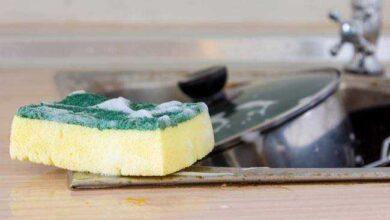 Foto de 4 atitudes comuns que podem contaminar sua esponja