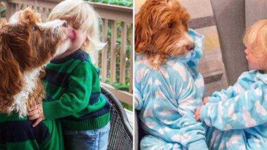 Foto de Bebê e cão e combinam looks e inundam a internet de fofura!