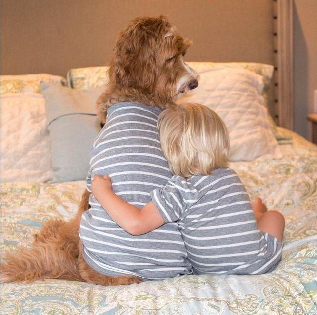 cachorro-roupas-bebe-6