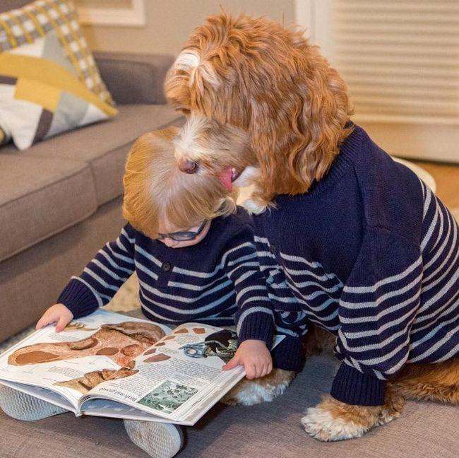 cachorro-roupas-bebe-7