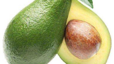 Foto de Como conservar abacate depois de aberto