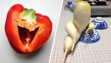 Foto de 20 Legumes e frutas que parecem algo bem diferente