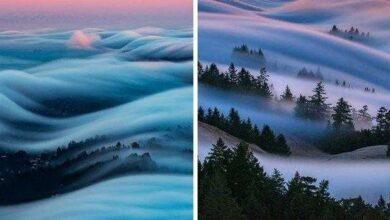 10 fotos incríveis de nevoeiros