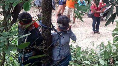 Boliviana foi amarrada a uma árvore por aldeões irritados – e depois condenada à morte por formigas