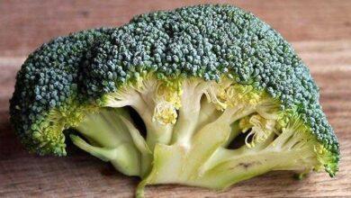 Conheça o poder e a versatilidade do brócolis