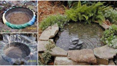 Foto de 13 Dicas para deixar o seu jardim mais bonito