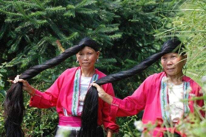 Dica barata para ter cabelos longos e saudáveis