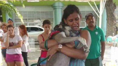 Foto de Donos reencontram em feira de adoção cão que estava perdido há 7 meses