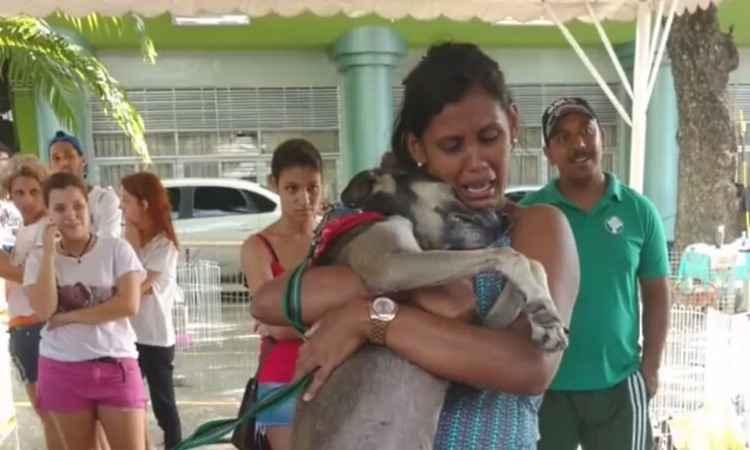 Donos reencontram em feira de adoção cão que estava perdido há 7 meses e