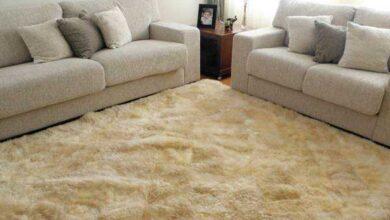 Foto de Como limpar tapete