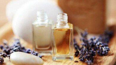 Quais os melhores aromas e cheiros para sua casa