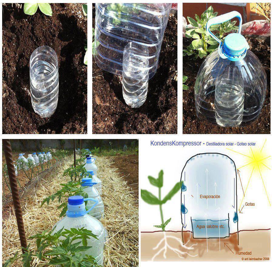Ideias criativas para re-utilizar garrafas de plástico