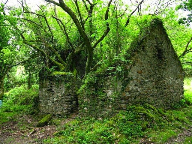 KERRY o caminho entre Sneem e Kenmare maneira na Irlanda