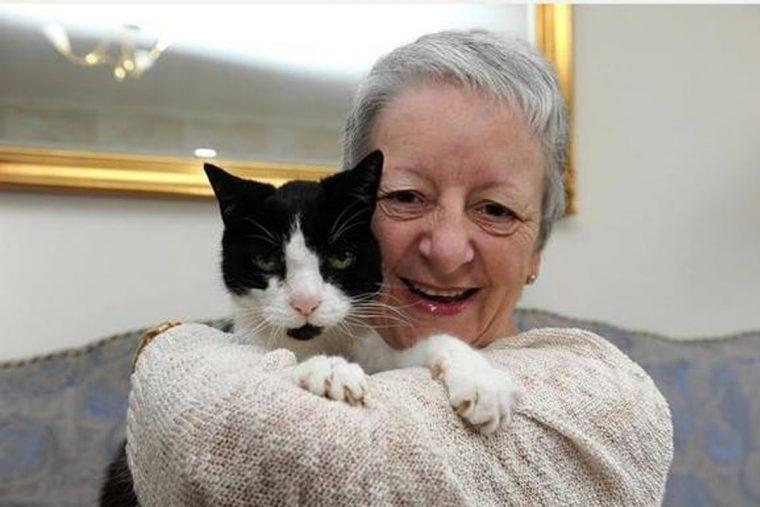 1496070158 743 o comportamento estranho desse gato salvou a vida de sua dona - O comportamento estranho desse gato salvou a vida de sua dona