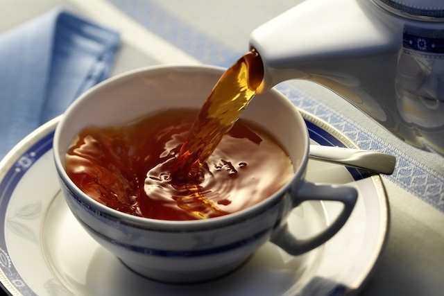 3 Receitas de Chá de Boldo contra Má Digestão