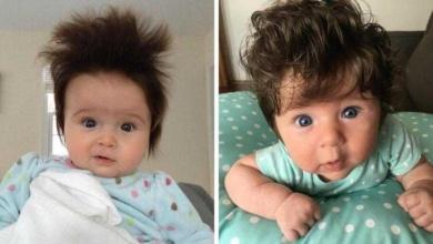 Photo of Pais compartilham fotos de bebês cabeludos viram sucesso na internet