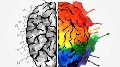 Photo of Qual o seu tipo de inteligência?