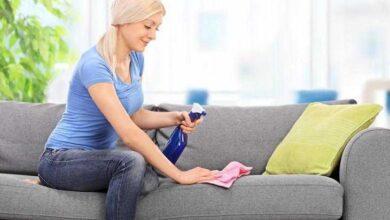 Foto de Como tirar mau cheiro do sofá