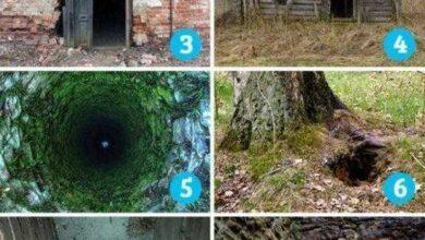 Foto de Qual imagem dá mais medo? A resposta pode relevar traços de sua personalidade
