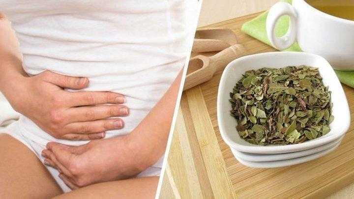 Tratamento caseiro para infecção urinária
