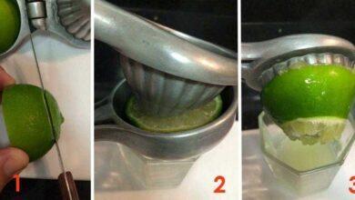 Foto de Você está usando o espremedor de limão de forma errada