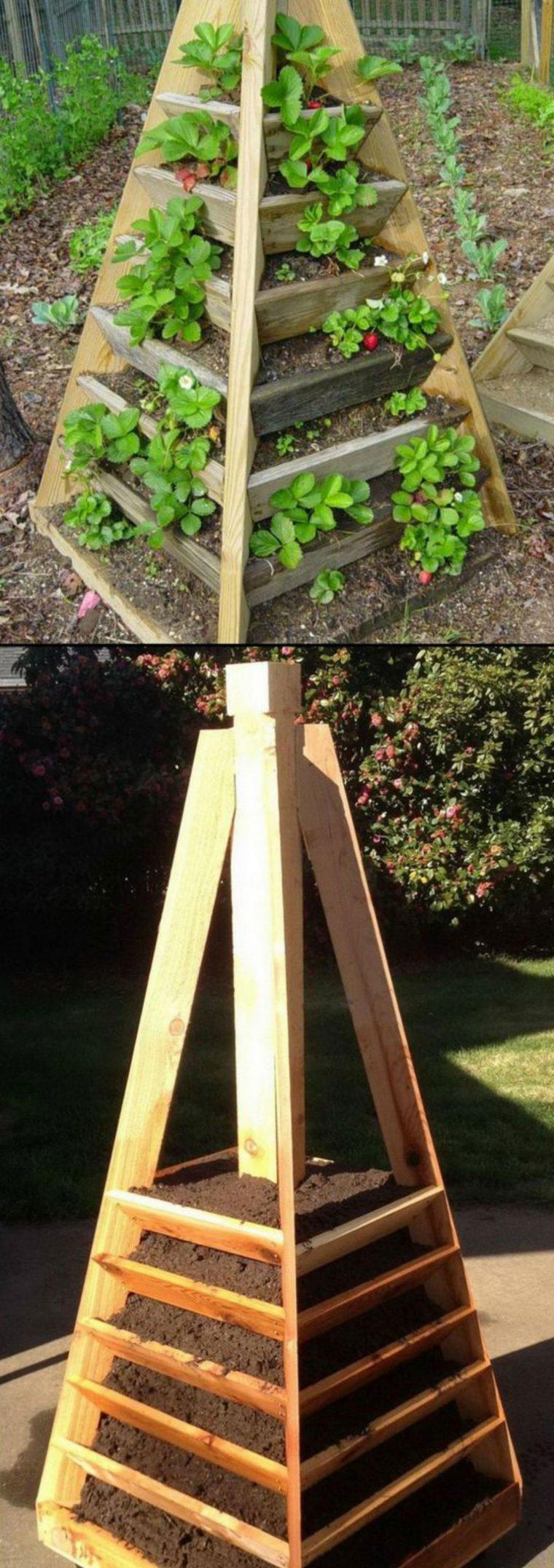 1497111864 604 9 formas diferentes de cultivar morangos em sua casa 9 formas diferentes de cultivar morangos em casa
