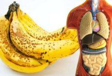 7 Benefícios de comer duas bananas por dia f1
