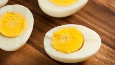 Photo of Veja o que acontece com seu corpo quando você come ovos todos os dias