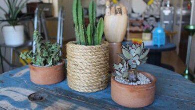 Foto de Como fazer vaso com corda e lata