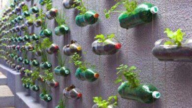 Foto de 10 Maneiras úteis e criativas de reciclar garrafas PET