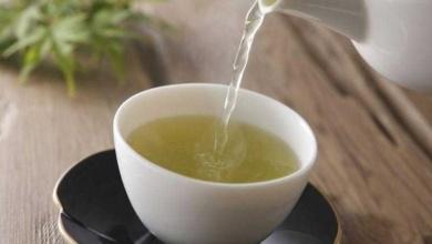 Foto de Chá branco emagrece e contém vários benefícios
