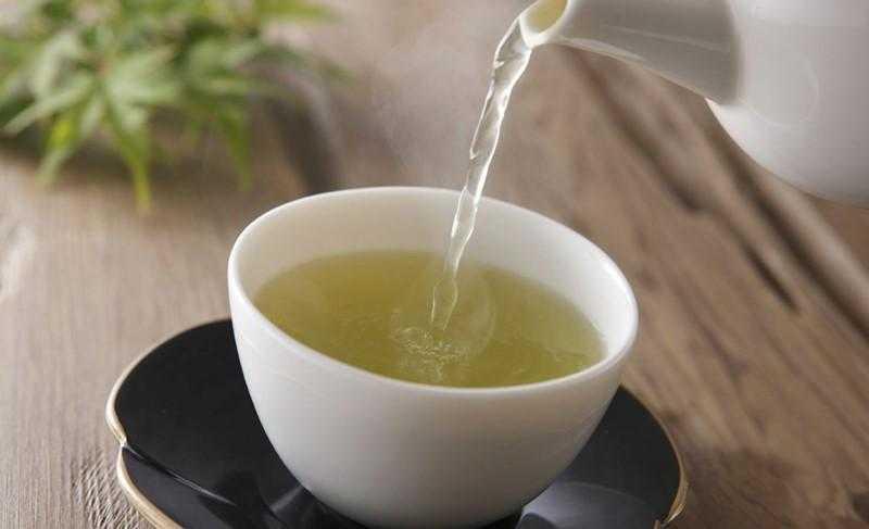 Chá branco emagrece e contém vários benefícios
