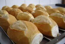 Foto de Dica para deixar o pão francês fresco por semanas