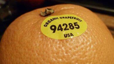 Você sabe o significado dos adesivos que vêm nas frutas?