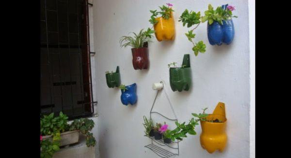 jardim com garrafa pet