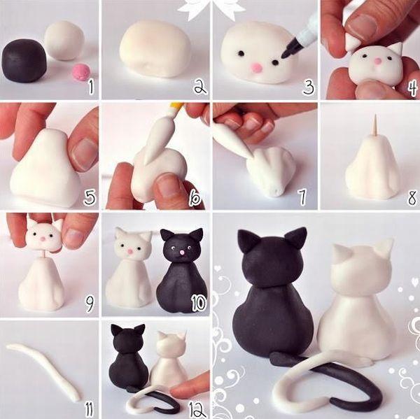 gatos de biscuit