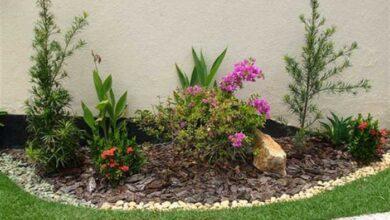 Como Decorar seu Jardim Gastando Pouco