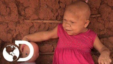 Foto de A Incrível história de Maria, uma mulher brasileira presa num corpo de bebê